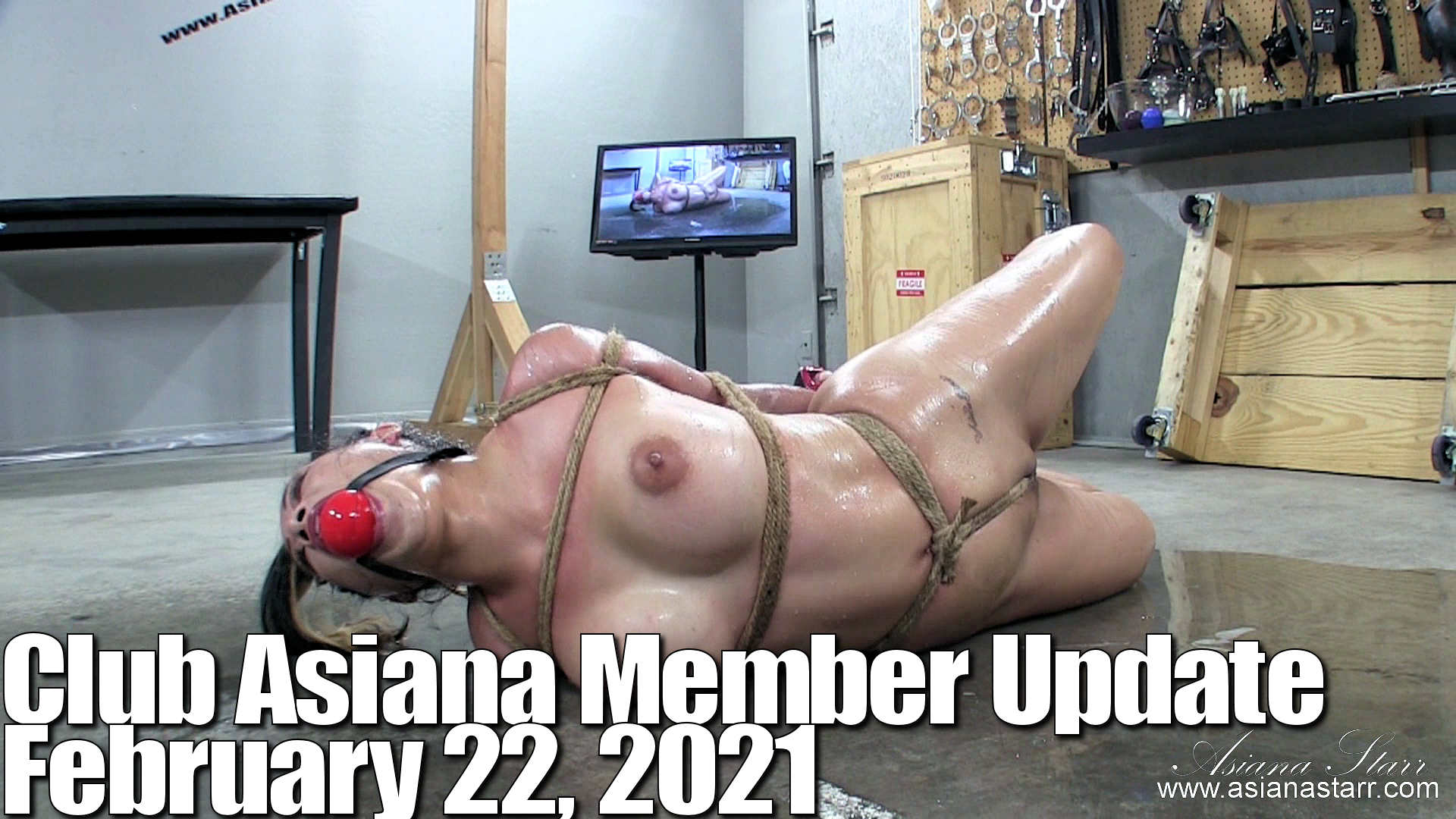 Club Asiana Member Update February 22 2021-pallet